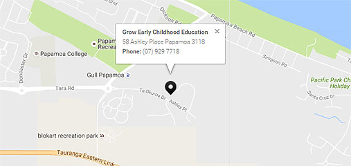 MAP: 58 Ashley Place Papamoa 3118