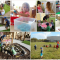 Grow Childcare March Newsletter